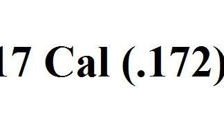 .17 Caliber