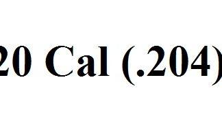 .20 Caliber