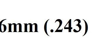 6mm (.243)