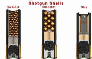 Shotshell
